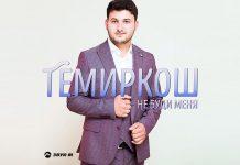 Вышла новая песня от ТемирКош - «Не буди меня»