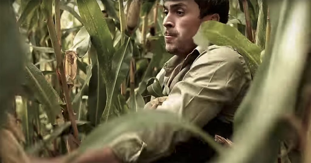 "The hero of Azamat Tsavkilov, risking his freedom, steals corn in the clip ""To the disco!"""
