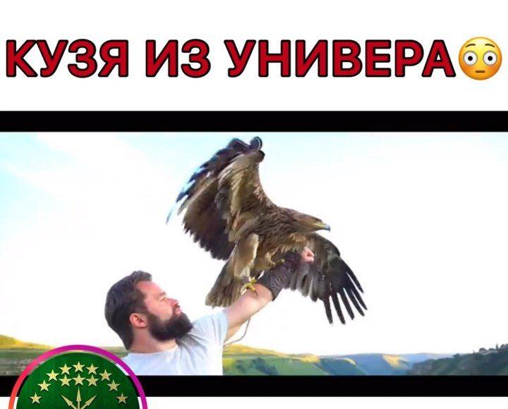 Салам алейкум Кавказ  Поставь оценку в комментариях ____________________________...