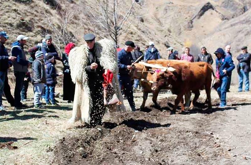 Праздник начинался с символического вспахивания борозды уважаемым жителем села, засеивали зерновыми культурами