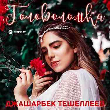 Джашарбек Тешеллеев. «Головоломка»