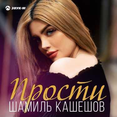 Шамиль Кашешов. «Прости»