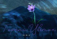 Альбина Токова. «Горный цветок (Remix)»