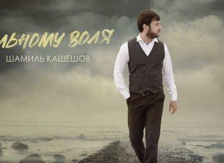 Шамиль Кашешов. «Вольному воля»