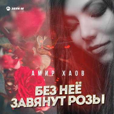Амир Хаов. «Без неё завянут розы»