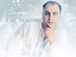 Новая песня Замира Пашаева - «Тают снежинки» уже доступна для скачивания