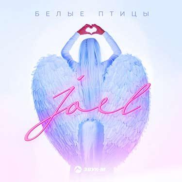 Joel's debut album, White Birds, is her life story revealed in songs!